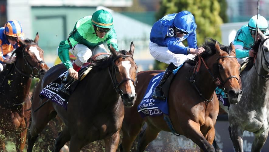 Wild Illusion Just Denied In Breeders Cup Filly Amp Mare