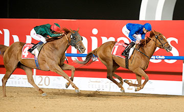 African Story leads home Prince Bishop at Meydan