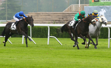 Manatee finishes third in the Prix Vicomtesse Vigier