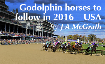 Horses to Follow in 2016 - USA