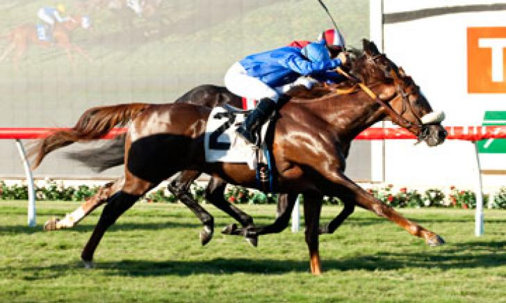 Crittenden wins the Listed Let It Ride Stakes at Del Mar