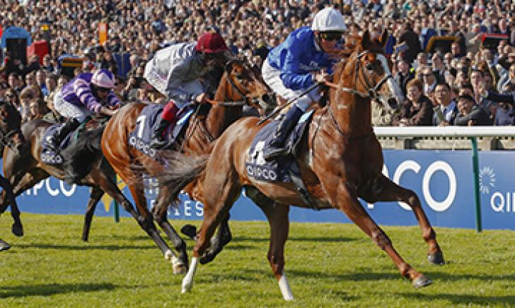 Hawkbill winning the Listed Havana Gold Newmarket Stakes