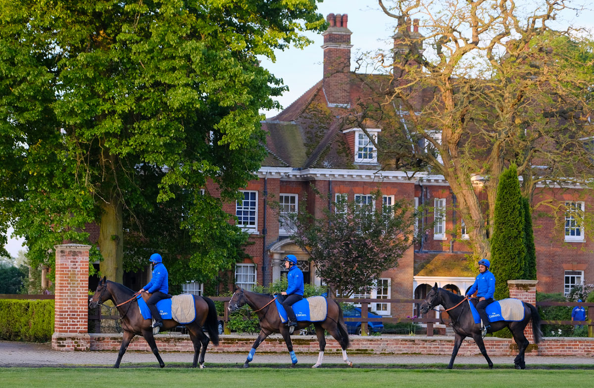 Godolphin Stables Newmarket